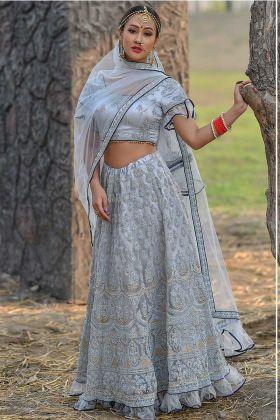 Ice Blue Color Butterfly Net Designer Lehenga Choli With Stone Work