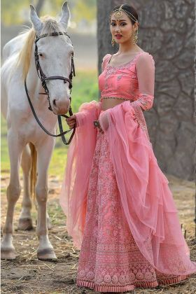 Pink Color Butterfly Net Lehenga Choli With Resham Work