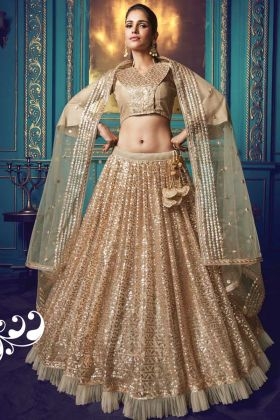 Rich Looking Bridal Net Lehenga Choli In Pretty Beige Color