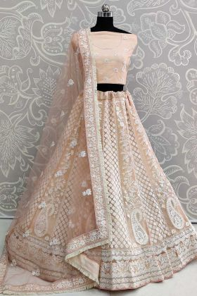 Thread Embroidery Light Peach Net Lehenga Chunni